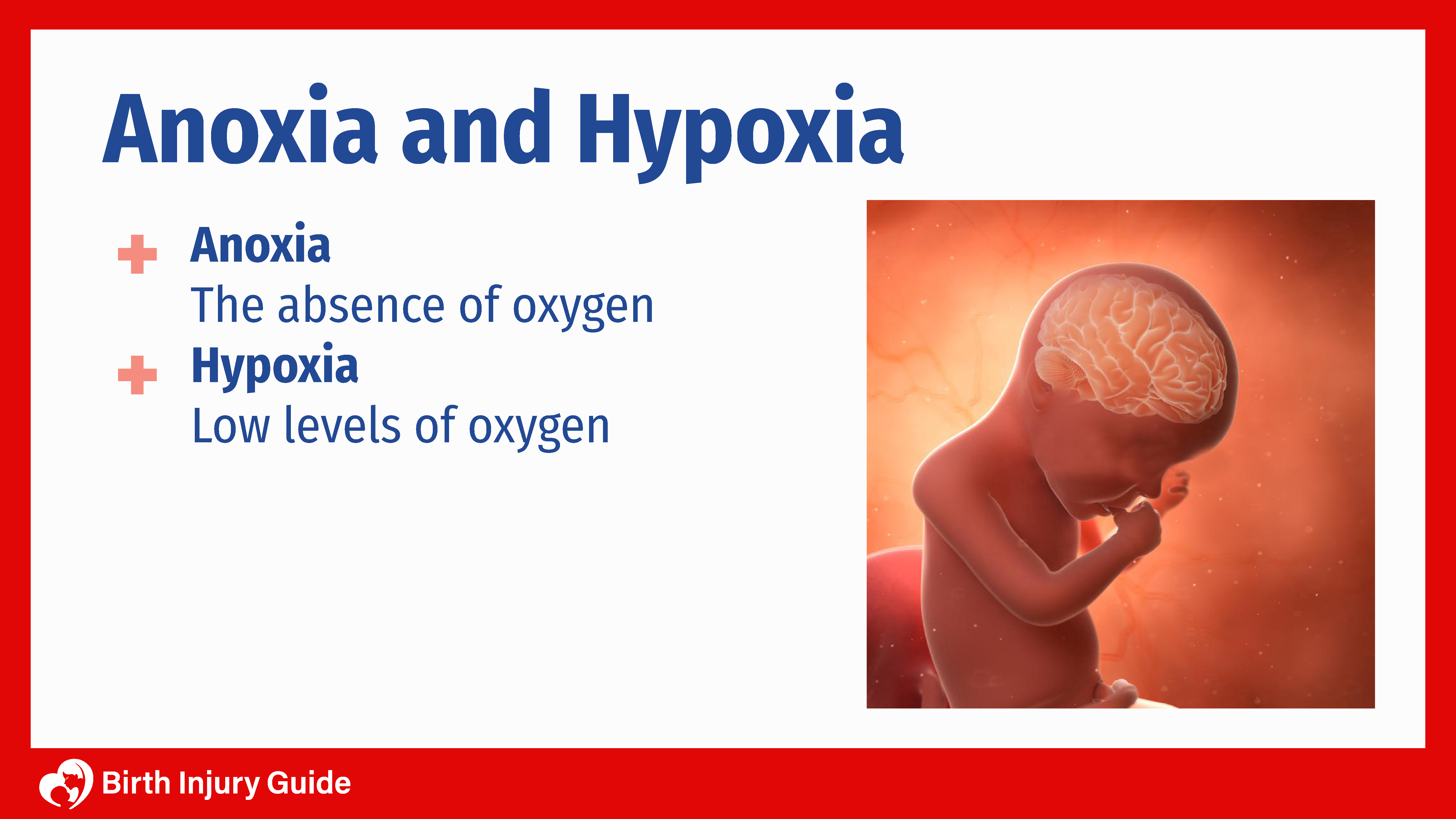 anoxia and hypoxia